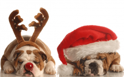 4 Tips – If You're Feeling A Little Overwhelmed At This Time of Year